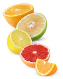 isolated citrus fruit halves stock photos