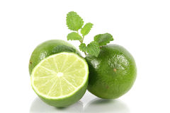 Citrus fruits. Three limes with balm in detail Stock Photography