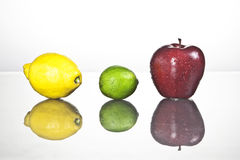 Citrus fruits. Three pieces of fruits with reflection Stock Image