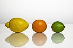 Citrus fruits. Lemon, orange and lime with reflection Stock Photography