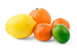 Citrus fruits. On white background royalty free stock images