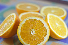 Citrus Fruits. On colored background Stock Images
