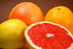 Citrus fruits. Halved grapefruit among other citrus fruits royalty free stock photos