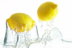 Citrus fruits. Two citrons jumping out of the water Stock Photos