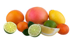 Citrus fruits Stock Images