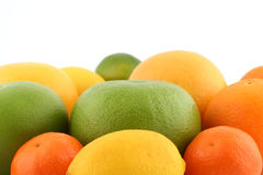 Citrus fruits. Oranges, limes, grapefruits, lemon and tangerine on white background royalty free stock photography