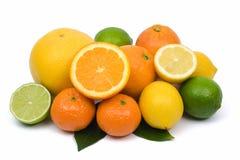 Citrus fruits. Lemon, orange, lime, tangerine and grapefruit on white background Stock Photos