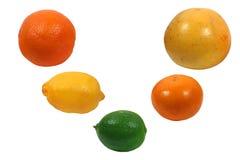 Citrus fruits Stock Images