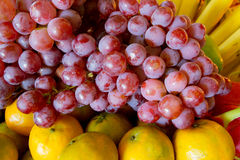 Citrus fruits. Royalty Free Stock Photos