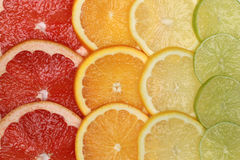 Citrus fruits background Royalty Free Stock Photography