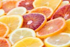 Citrus fruits background Royalty Free Stock Photo