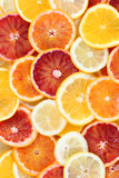 Citrus fruits background Stock Photos