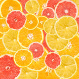 Citrus Fruits Background Mix. Lemon, Grapefruit, Orange And Tangerine Citrus Fruits Background Mix Stock Photos