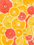 Citrus Fruits Background Mix Royalty Free Stock Images