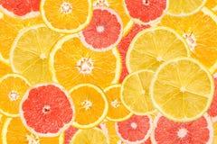 Citrus Fruits Background Mix. Lemon, Grapefruit, Orange And Tangerine Citrus Fruits Background Mix Stock Images