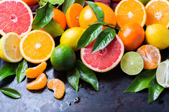 Citrus fruits background. Orange, grapefruit, tangerine, lime, lemon vitamin Stock Photography