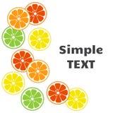 Citrus fruits background. Vector illustration royalty free illustration