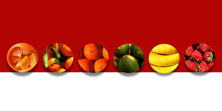 Citrus fruits, bananas and strawberries inside six circles Royalty Free Stock Images