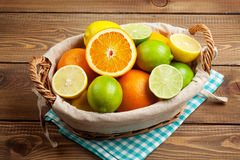 Citrus fruits in basket. Oranges, limes and lemons Stock Images