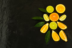 Citrus fruits on black background Stock Image