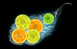 Citrus fruits on a black background Stock Photos