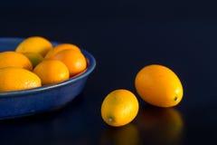 Citrus fruits on black background Royalty Free Stock Photos