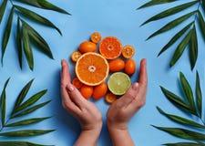 Citrus fruits on a blue background. Citrus fruits with hands on a blue background top view stock photos