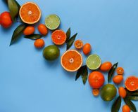 Citrus fruits on a blue background. Top view royalty free stock photo
