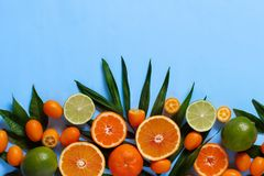 Citrus fruits on a blue background. Top view stock photo