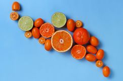 Citrus fruits on a blue background royalty free stock photo