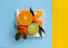 Citrus fruits on a blue and yellow background. Citrus fruits on a plate on a blue and yellow background stock image