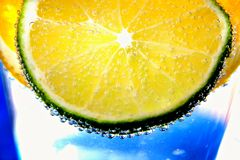 Citrus fruits of - slices orange, lemon, lyme in water with bubles-a refreshing summer vitamin drink. Citrus fruits - clices of orange, lemon, lyme in water Royalty Free Stock Images