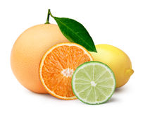 Citrus fruits with clipping paths. Citrus fruits: lime wheel,lemon,orange slice,grapefruit. Clipping paths, infinite depth of field Stock Images