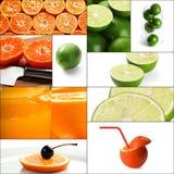 Citrus fruits collage Stock Photos
