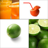 Citrus fruits collage Stock Image