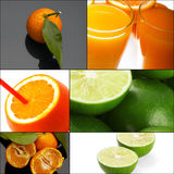 Citrus fruits collage Stock Images