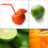 Citrus fruits collage Royalty Free Stock Image