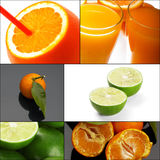 Citrus fruits collage Royalty Free Stock Photos