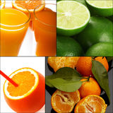 Citrus fruits collage Stock Photo