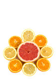 Citrus fruits composition. Citrus fruits arranged in the form of flower composed of slices of orange, lemon and grapefruit Stock Image