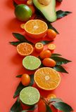 Citrus fruits on a coral red background. Close up royalty free stock photo