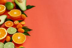 Citrus fruits on a coral red background stock image