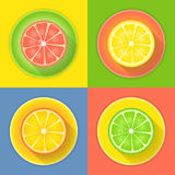 Citrus fruits four icons Royalty Free Stock Photo