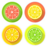 Citrus fruits four icons on a white Stock Image