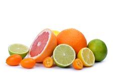 Citrus fruits  Grapefruit,Orange, Lemon, Lime, Kumquat. Isolated on white background Royalty Free Stock Photography