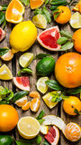 Citrus fruits -  grapefruit, orange, tangerine, lemon, lime  sliced and whole with leaves. Stock Images