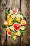 Citrus fruits - grapefruit, orange, tangerine, lemon and lime, sliced and whole with leaves. Stock Image
