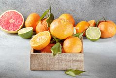 Citrus fruits with green leaves, tangerine, grapefruit and lime royalty free stock photo