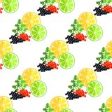 Citrus Fruits, Green Parsley and Caviar Pattern Royalty Free Stock Photo