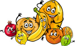 Citrus fruits group cartoon illustration Royalty Free Stock Photo